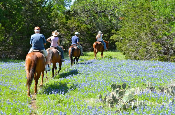 Photo Essay: The Texas Hill Country | Travel Sherpa Keith